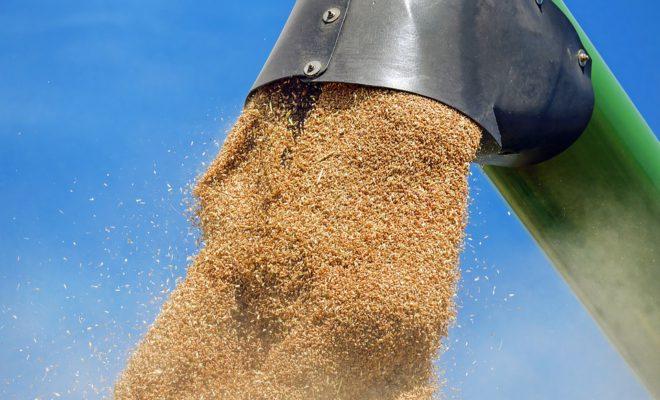Зерно стало самым динамичным грузом в 2018 году