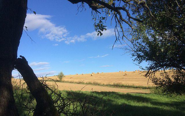 Сведения о земельном участке советуют проверять