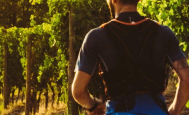 Открыта регистрация на винный марафон в Анапе